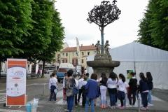 8 i ragazzi davanti all'albero della pace