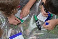 10 provini sporcati con pennarelli e gessetti